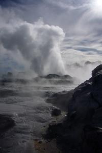 Rotorua geyser erupting, North Island